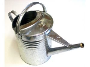 GALV WATERING CAN 2 GALL